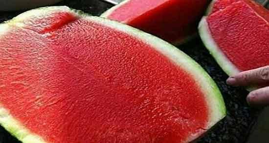 هندوانه برای زخم معده ؛ خوردن هندوانه چه تاثیری در زخم معده دارد