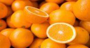 پرتقال برای کبد مفید است ؛ خاصیت درمانی پرتقال برای پاکسازی کبد
