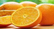 پرتقال در شیردهی ؛ افزایش شیر مادر با خوردن میوه پرتقال