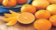 پرتقال و دیابت ؛ کاهش سطح قند خون و کلسترول در افراد دیابتی با پرتقال