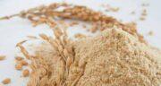 پودر جوانه گندم برای لاغری شکم ؛ استفاده از پودر جوانه گندم برای آب کردن شکم