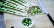 پیازچه و خواص آن ؛ فواید خوردن سبزی پیازچه برای چربی و فشار خون بالا