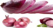 پیاز برای کبد چرب ؛ خاصیت پیاز برای درمان بیماری کبد چرب