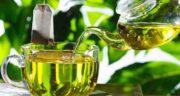 چای سبز در بارداری ؛ آیا زنان باردار می توانند چای سبز بخورند؟