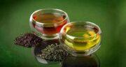 چای سبز در درمان فیبروم ؛ از بین بردن مشکل فیبروم خانم ها با خوردن چای سبز