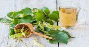 چای سبز در شیردهی ؛ فواید و مضرات خوردن چای سبز در دوران شیردهی