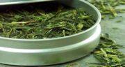 چای سبز در طب اسلامی ؛ خاصیت لاغر کنندگی چای سبز از نظر طب اسلامی
