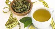 چای سبز و زنجبیل ؛ اثر آرام بخش بودن و لاغر کنندگی چای سبز و زنجبیل