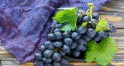 انگور سیاه برای کرونا مفید است ؛ آیا خوردن انگور سیاه باعث درمان کرونا می شود؟
