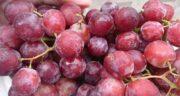 انگور قرمز درشت ؛ وجود ویتامین ها و مواد مغذی در انگور قرمز
