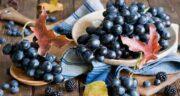 خواص انگور سیاه برای پوست ؛ ویتامین E موجود در انگور سیاه مفید برای پوست