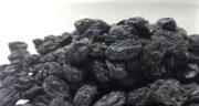 خواص انگور سیاه خشک شده ؛ پاکسازی ریه و کبد با انگور سیاه خشک شده یا مویز
