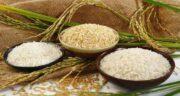 خواص برنج در طب اسلامی ؛ بررسی ارزش غذایی و خواص برنج سفید