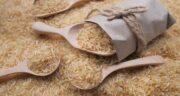 خواص برنج در طب سنتی ؛ اهمیت خوردن برنج از دیدگاه طب سنتی