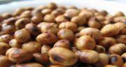 خواص دانه سویا ؛ مصرف دانه سویا فواید سلامتی زیادی دارد