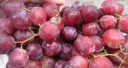خواص و مضرات انگور قرمز ؛ همه چیز درباره فواید و عوارض مصرف انگور قرمز
