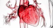 درد قلب ؛ علت درد قلب در جوانان و سالمندان هنگام خواب ناشی از استرس و لرز