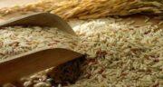 سبوس برنج برای چاقی صورت ؛ برای تپل شدن صورت سبوس برنج بخورید
