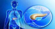 پانکراس ؛ درمان و کار پانکراس در بدن چیست و پانکراس سمت چپ است یا راست