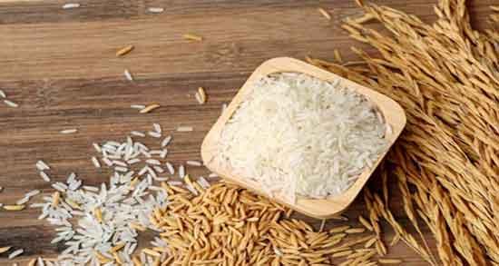 کالری برنج ؛ در 100 گرم برنج سفید پخته شده چقدر کالری وجود دارد
