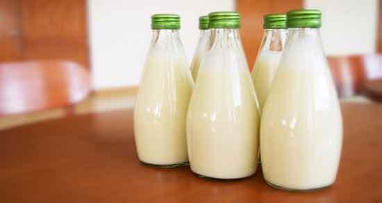خواص شیر و زردچوبه برای لاغری ؛ خوردن زردچوبه و شیر ناشتا برای کاهش وزن