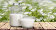 خواص شیر و زردچوبه ؛ خواص شیر و زردچوبه و عسل برای ریه در طب سنتی