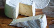 مضرات پنیر ؛ مضرات پنیر در طب سنتی + خواص و مضرات پنیر لاکتیکی بر حافظه