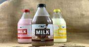 مضرات شیر در طب سنتی ؛ جایگزین شیر در طب سنتی + شیر در طب سنتی روازاده