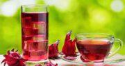 تاثیر چای ترش بر استروژن ؛ خواص استفاده از چای ترش برای تنظیم هورمون استروژن
