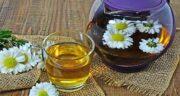 خواص چای بابونه در بارداری ؛ آیا زنان باردار می توانند چای بابونه مصرف کنند