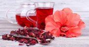 خواص چای ترش برای لاغری ؛ تاثیر مصرف چای ترش برای لاغری و کاهش وزن