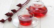 خواص چای ترش برای کبد ؛ مصرف چای ترش برای حفظ سلامت کبد