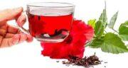 خواص چای ترش در بارداری ؛ آیا می توان در بارداری چای ترش مصرف کرد