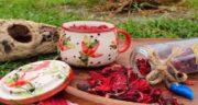 خواص چای ترش و نسترن ؛ دمنوش پرخاصیت چای ترش و نسترن