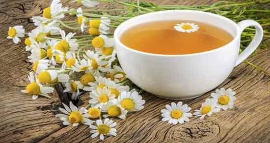 روش تهیه چای بابونه ؛ آموزش صحیح درست کردن چای بابونه