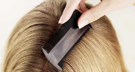 شستن سر با سرکه سفید برای شپش ؛ کاربرد سرکه سفید برای درمان شپش