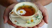 طرز تهیه چای بابونه ؛ نحوه صحیح درست کردن چای بابونه