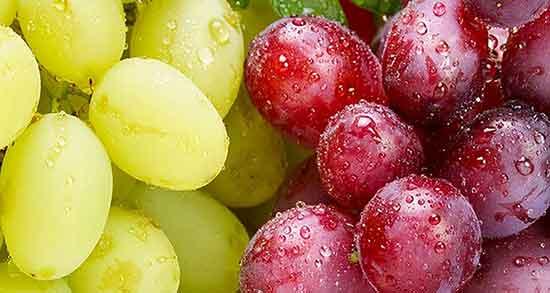 مضرات خوردن سرکه انگور ؛ عوارضی که سرکه انگور برای سلامتی دارد