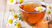 مضرات چای بابونه ؛ در چه مواردی خوردن چای بابونه برای بدن ضرر دارد