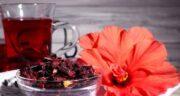 مضرات چای ترش در شیردهی ؛ عوارض دمنوش چای ترش در زمان شیردهی