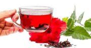 معجزه چای ترش ؛ فواید بی شمار چای ترش برای سلامتی