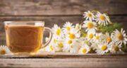 چای بابونه در شیردهی ؛ تقویت شیر مادر با خوردن چای بابونه