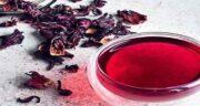 چای ترش برای معده ؛ فواید و مضرات خوردن چای ترش برای معده