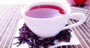 چای ترش برای چی خوبه ؛ بررسی خواص درمان چای ترش برای سلامتی