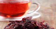 چای ترش در طب اسلامی ؛ اهمیت خوردن چای ترش از دیدگاه طب اسلامی