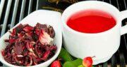چای ترش و کم خونی ؛ چای ترش منبع غنی آهن و درمان کننده کم خونی