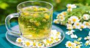 کالری چای بابونه ؛ یک فنجان چای بابونه چه میزان کالری دارد