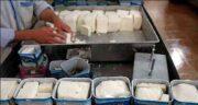 خواص و مضرات پنیر با سرکه ؛ مضرات تهیه پنیر با سرکه + خواص پنیر گوسفندی