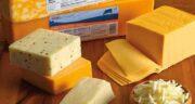 پنیر و کم کاری تیروئید ؛ پنیر های مفید برای تیروئید کم کار + لبنیات و تیروئید