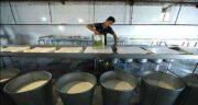 طرز تهیه آب پنیر برای بدنسازی ؛ مصرف آب پنیر برای لاغری + اب پنیر برای بدن